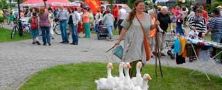 Gänsemarkt auf dem Stadtteilfest 2013